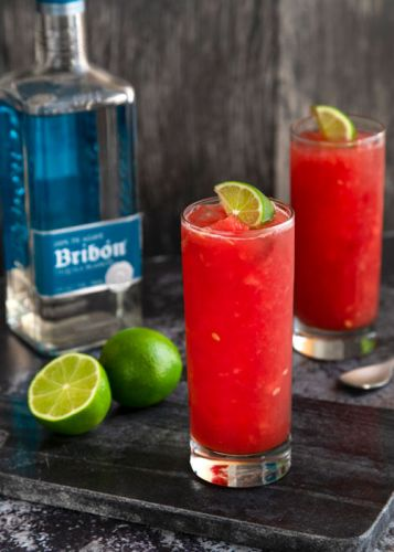 Here's Everything You Need to Know About Tequila Bribón