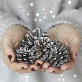 How to Prep Fresh Pinecones For Your DIY Holiday Decor