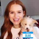 "So Cute! Madelaine Petsch's New Puppy Is ""Like a Ferocious Little Cotton Ball"""