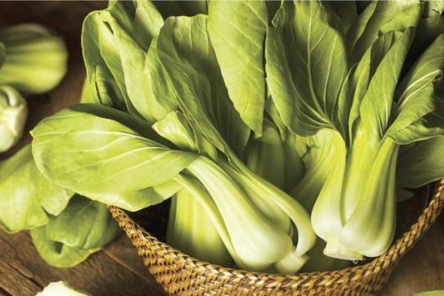 A spring vegetable standout