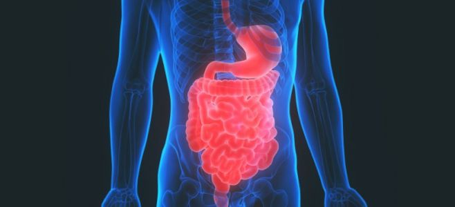 Malabsorption Syndrome (+ 5 Natural Ways to Get the Nutrients Your Body Needs)
