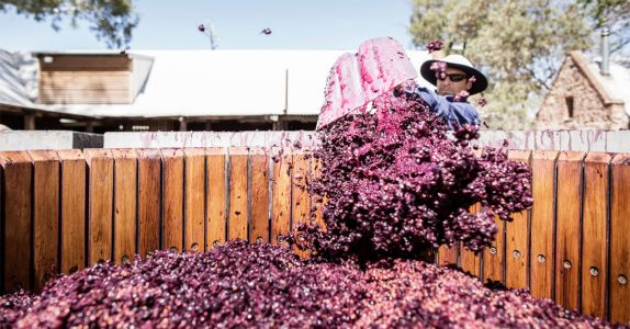 Here's Why Shiraz Is the Most Popular Red Wine in Australia