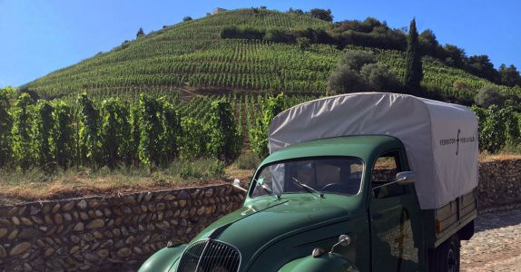 Get to Know a Hidden Gem of the Rhône Valley: Ferraton Père & Fils