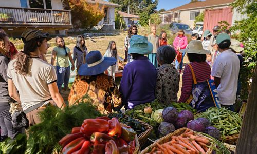 A Gift Economy Could Change the Food System