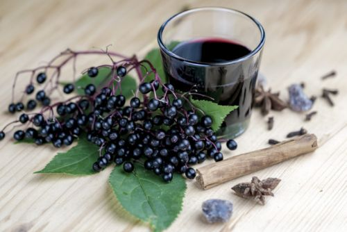 Elderberry and Kids: What You Need to Know
