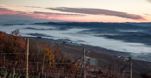 Meet the Young Winemakers Championing Barolo's New Wave
