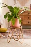 15 Rattan Planters That'll Elevate Your Plant Friends and Your Home Decor Game