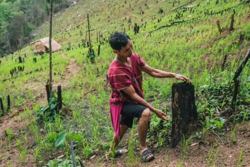 In harmony with the landscape: A trip to Northern Thailand to explore traditional farming and land management