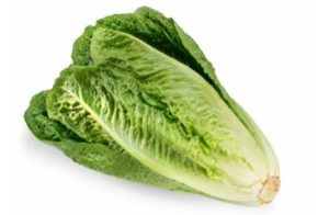 Canadian Romaine Lettuce E. coli Outbreak: 30 Sick with 1 Dead
