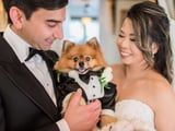 These Pups Deserve a Round of Appaws For Looking This Good in These Weddings