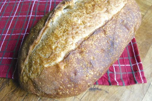 Steam in bread baking: How steam can transform your bread from dull to dazzling