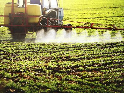 Pesticide Action Week: Agroecology Protects Biodiversity