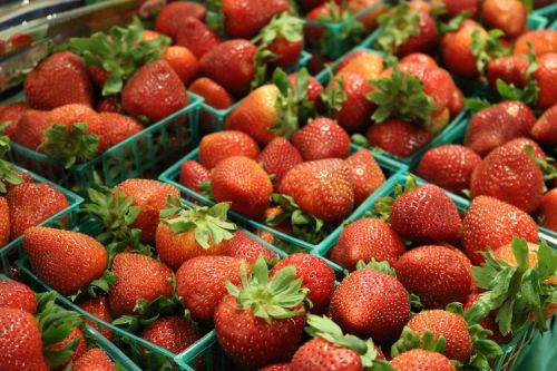 Berry Festa at Eataly NYC Downtown