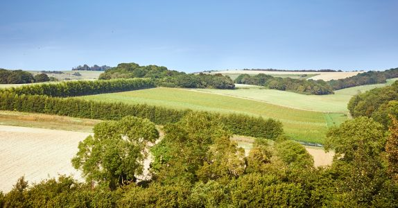 English Sparkling Wine Is Making an Impact on This Side of the Pond