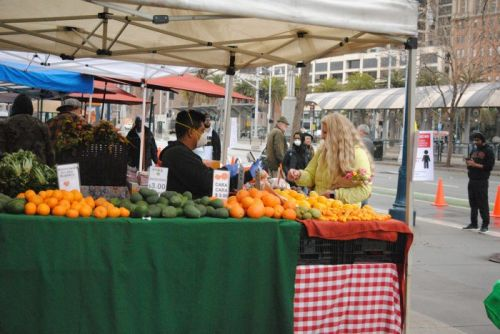 How to Support Farmers and Safely Shop at Farmers' Markets