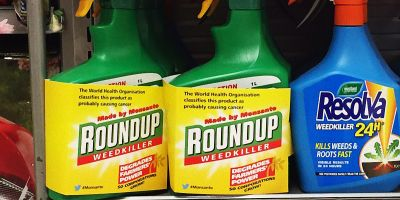 Roundup: the world's best selling herbicide, and its effect on your liver