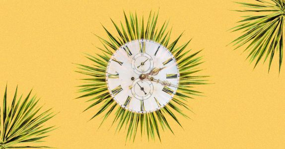 In the Agave Life Cycle, Time Means Everything