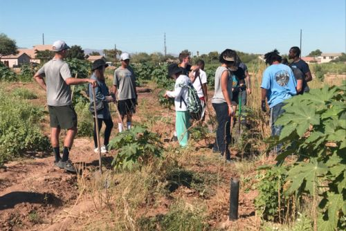 A Phoenix Urban Garden Provides At-Risk Individuals a Path Forward