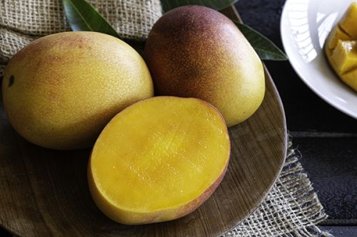 Everything You Wanted to Know About Mangoes