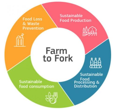 The European Green New Deal: Farm to Fork Strategy