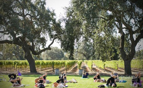 Taste of The Santa Ynez Valley Celebrates With Over 100 Partners