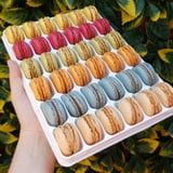 This 36-Pack of French Rainbow Macarons Is the Reason I Have a Costco Membership