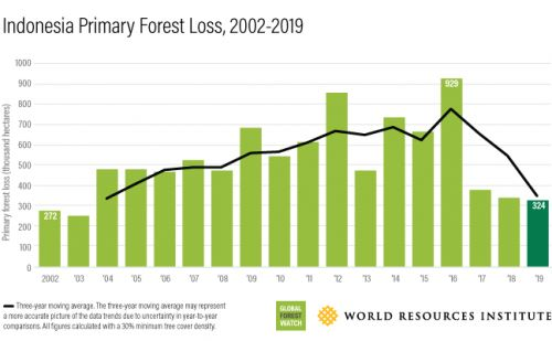 How to stop runaway deforestation? Look at Indonesia