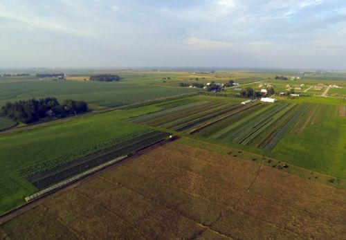 Grinnell Heritage Farm is Farming Against Type-and Against the Odds-in Iowa