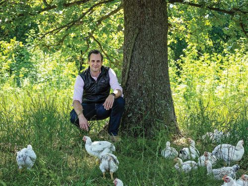 Chicken, Chicken! Blue Apron Vet Matt Wadiak Is Raising A Better Bird