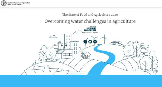 Weekend reading: FAO infographic on agriculture and water resources
