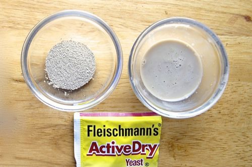 Active dry yeast: Do you really need to dissolve it first?