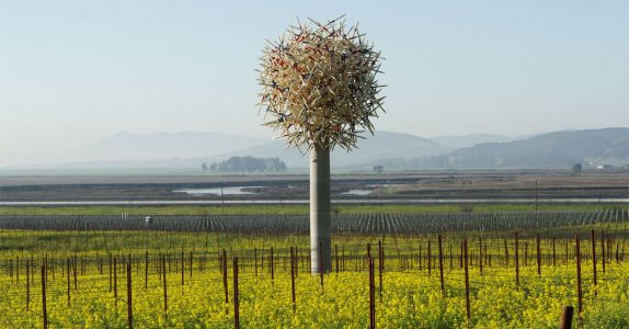 Inside the 200-Acre Sonoma Winery Home to World-Class Art
