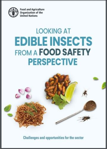 Weekend reading: Edible insects