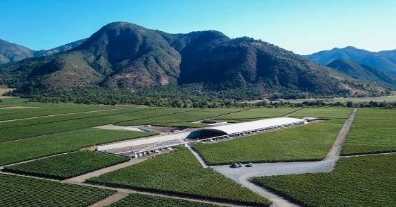 The Women Winemakers Leading Chile's Sustainability Efforts