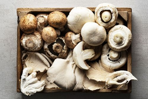 The 411 on Mushroom Nutrition, Plus 10 Types to Try