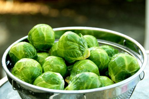 How to Cook Brussels Sprouts 6 Delicious Ways