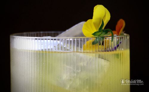10 Evolutionary Cocktails Darwin Would Have Loved